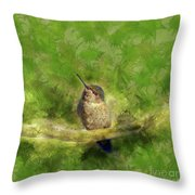 Hummingbird In A Tree Throw Pillow