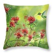 Hummingbird In Beebalm Throw Pillow
