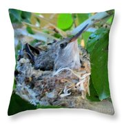 Hummingbird In Nest 1 Throw Pillow