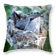Hummingbird In Nest 2 Throw Pillow