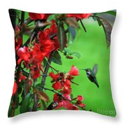 Hummingbird In The Flowering Quince - Digital Painting Throw Pillow
