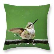 Hummingbird In The Rain Throw Pillow