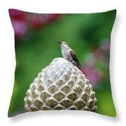 Hummingbird On Garden Water Fountain Throw Pillow