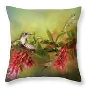 Hummingbird Paradise Throw Pillow