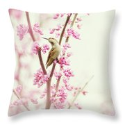 Hummingbird Perched Among Pink Blossoms Throw Pillow
