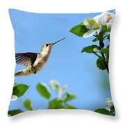 Hummingbird Springtime Throw Pillow