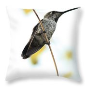 Hummingbird Tongue Throw Pillow