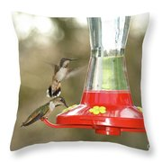 Hummingbird Trio Throw Pillow