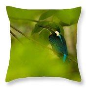 Hummingbird Wants To Hide Throw Pillow