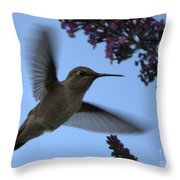Hummingbird Wings And Butterfly Bush Throw Pillow