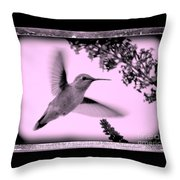 Hummingbird With Old-fashioned Frame 2  Throw Pillow
