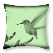 Hummingbird With Old-fashioned Frame 5 Throw Pillow