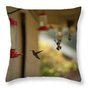 Hummingbirds In Flight Throw Pillow