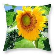Humongous Sunflower Throw Pillow