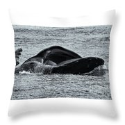 Humpback Fishing Throw Pillow