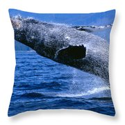 Humpback Full Breach Throw Pillow
