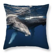 Humpback Whale And Calf Throw Pillow