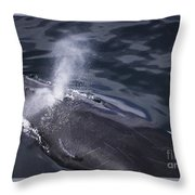 Humpback Whale Blowing Throw Pillow