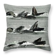 Humpback Whale Bubble-net Feeding Sequence X5 V2 Throw Pillow