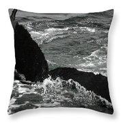 Humpback Whale Fluke 3 Throw Pillow