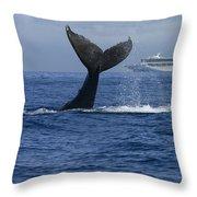 Humpback Whale Tail Lobbing Near Cruise Throw Pillow by Flip Nicklin