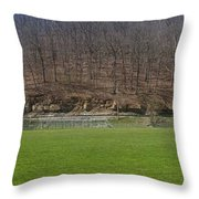 Hundred Hs Ballpark Throw Pillow