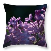 Hungarian Lilac 5 Throw Pillow