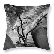 Hunger In The Desert Throw Pillow
