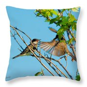 Hungry Birds In Tree Close-up Throw Pillow