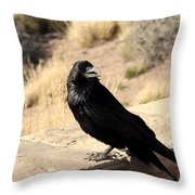 Hungry Crow Throw Pillow