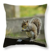 Hungry Squirrel Throw Pillow