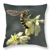Hunter Wasp Throw Pillow