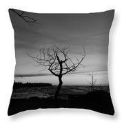 Hunters Point  Throw Pillow