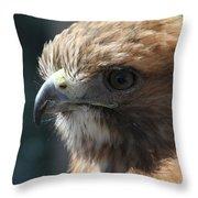 Hunter's Spirit Throw Pillow