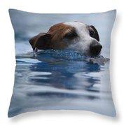 Hunting Dog Throw Pillow