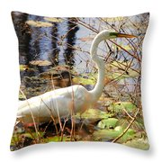 Hunting For Food Throw Pillow