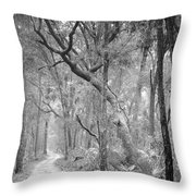 Hunting Island Path  Throw Pillow