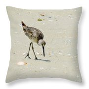Hunting Plover Throw Pillow