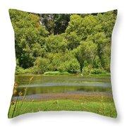 Huntington Beach Central Park II Throw Pillow
