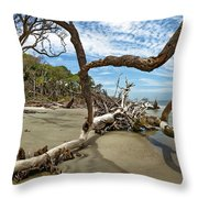 Huntington Island Panorama Throw Pillow
