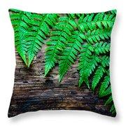 Huntley Meadows Park #2 Throw Pillow