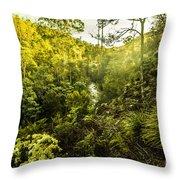 Huon Valley Throw Pillow