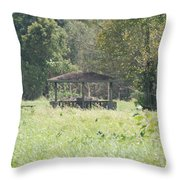 Huppa In The Fields Throw Pillow
