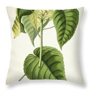 Hura Botanical Print Throw Pillow