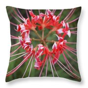 Hurricane Lily Throw Pillow