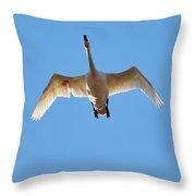 Hurt. Whooper Swan Throw Pillow