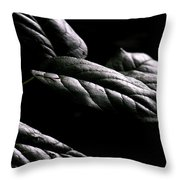 Hushed Throw Pillow by Bonnie Bruno