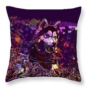 Husky Dog Pet Canine Purebred  Throw Pillow
