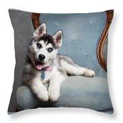 Husky Puppy II Throw Pillow