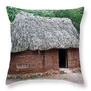 Hut Yucatan Mexico Throw Pillow